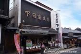 ●熱熱鬧鬧的成田山參道商店街:●頗有名氣的漢方藥材名店.JPG