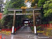 紅葉飄飄15日東京自由行--日光二荒山神社:●再嚐試移動....JPG