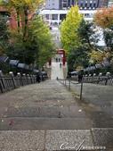 紅葉飄飄15日東京自由行--愛宕神社:07●不過我在尚未領悟飛黃騰達之前上下這段樓梯,真是捏把冷汗,深怕一個重心不穩就後空翻.JPG