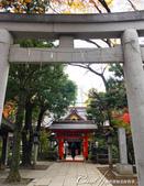 紅葉飄飄15日東京自由行--愛宕神社:08●好不容易,走完最後一道階梯,來到丹塗りの門前.JPG