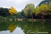 紅葉飄飄15日東京自由行--清澄庭園:17●廣闊的池塘內分佈有三座小島、再加之茶室式的典雅建築與映於水面的小島和樹影形成了庭園內一道亮麗的風景線06.J