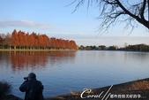 紅葉飄飄15日東京自由行--水光雲影、秋色無邊的水元公園:11●水邊有不少愛好攝影的愛鳥人士.JPG
