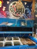 紅葉飄飄15日東京自由行--以滋味美妙的金槍魚三色丼結束快樂的行程:10●看魚兒水中游是一件極富雅興的事,不過在此又是另外一回事了....JPG