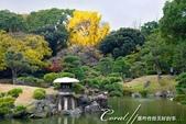 紅葉飄飄15日東京自由行--清澄庭園斑瀾的秋色:12.JPG