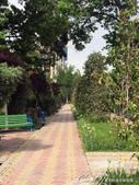 2019Amazing!穿越古絲路上的中亞五國之旅(7-5)--塔吉克斯坦首都杜尚別印象之旅:02●鮮花、樹林、長椅、步道,魯達基花園有一股詩意氛圍,讓人置身其中不自覺忘情流連.JPG