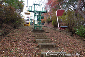 紅葉飄飄15日東京自由行--御岳山:●接著走幾步路抵達搭乘吊椅的御岳平站.JPG
