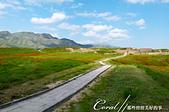 2019Amazing!穿越古絲路上的中亞五國之旅(11-2)--土庫曼斯坦之世界遺產──尼薩遺蹟:04●從入口處的觀景台可清楚遠望一條通往尼薩遺蹟的蜿蜒小路.JPG