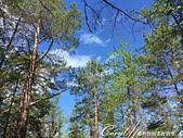 2019夏季內蒙草原風光與貝加爾湖詩意之約(9-1)--6H「遊盪」奧利洪島之追風、尋幽、賞湖景:08●高高的藍天與原始的黃土,貝加爾湖濱的原始自然保護區,是世界上少數的純淨大地 (1).JPG