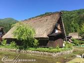 恰似童話國度的合掌村:不受遊客驚擾的一片寧靜水田.jpg