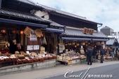 ●熱熱鬧鬧的成田山參道商店街:●販售傳統工藝用品的商店.JPG