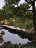 紅葉飄飄15日東京自由行--清澄庭園:36●有那麼一絲像童話森林的畫面.JPG