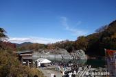 紅葉飄飄15日東京自由行--長瀞泛舟:47●近中午時分,木舟陸續帶來一批批遊客,岸邊亦有等待從這裡出發前往高砂橋的排隊人潮.JPG