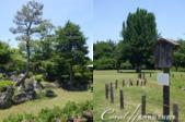 初夏14日自由行--春風吹又生的名古屋城:●公園內依時序盛開的花朵,多少撫平了名古屋城因戰爭受創的遺憾,成為居民散步休閒的空間06.png