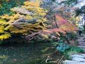 紅葉飄飄15日東京自由行--成田山公園:10 (14)●或許因為岸邊有大大小小的石塊裝飾,或是建造之初賦有關於智慧的意象。總之,三座池中,我特別喜愛文殊