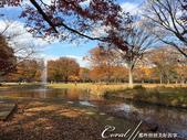 紅葉飄飄15日東京自由行--代代木公園:13●頗有歐式浪慢風情的噴水池.JPG