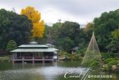 紅葉飄飄15日東京自由行--清澄庭園:14●廣闊的池塘內分佈有三座小島、再加之茶室式的典雅建築與映於水面的小島和樹影形成了庭園內一道亮麗的風景線02.J