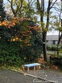 紅葉飄飄15日東京自由行--閃耀著童話森林般迷人色彩的小石川植物園:06●為感謝大姐的好意,立馬在對面的長椅上研究一下。但她有所不知,我們都習慣帶狗出門,在偌大的園區內若迷了路