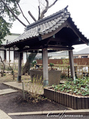 2017關東10日樂得自在:●神社裡不可少的「手水舍」.JPG