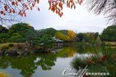 紅葉飄飄15日東京自由行--清澄庭園一眼看不完的池畔風情:11.JPG