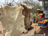 2019Amazing!穿越古絲路上的中亞五國之旅(5-3)--吉爾吉斯斯坦之蒙古包風味餐:06●路上經過一家小攤,販賣的東西還挺多的,動物毛皮、不是當季的蘋果和梨、煙燻魚.JPG