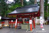 紅葉飄飄15日東京自由行--日光二荒山神社:●手洗舍.JPG