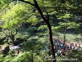 八反瀑布的無敵美景:IMG_5273.JPG