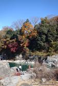 紅葉飄飄15日東京自由行--長瀞泛舟:42●秋天的顏色....JPG