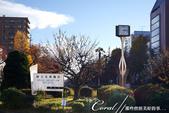 紅葉飄飄15日東京自由行--大学通り:02●走出車站便可看到象徵性的標示牌.JPG