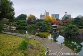 紅葉飄飄15日東京自由行--清澄庭園:44●四季之美皆有不同,來庭園走走!讓風光取代五光十色,為旅程留下精彩回憶.JPG