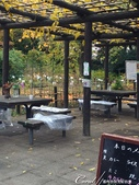 紅葉飄飄15日東京自由行--閃耀著童話森林般迷人色彩的小石川植物園:35●經過了園區內小小的、但非常溫馨的飲食區,無論有沒有點購飲食,工作人員都歡迎你找個地方歇坐.JPG