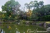紅葉飄飄15日東京自由行--清澄庭園內的奇石及渡池石塊:07.JPG