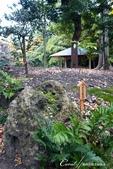 紅葉飄飄15日東京自由行--清澄庭園的特色名石:05.JPG