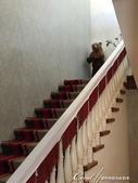 2018印象翻轉的俄羅斯奇幻之旅(3-2)--一窺托爾斯泰故居紀念館之不凡人物的平凡日常:09●前往起居室的長長階梯的轉檯上,一隻雙手端著托盤的熊,原來是當初用來與客人交換名片之用.JPG