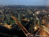 2017關東10日樂得自在:●窗外已悄悄轉換為華燈初上的光景.JPG