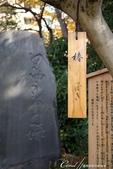 紅葉飄飄15日東京自由行--雖滿園蕭瑟卻也難掩風雅的向島百花園:23●循著文人墨客的足跡,尋找低調潛藏在角落的風雅氣息04.JPG