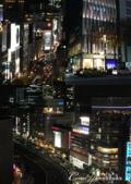 紅葉飄飄15日東京自由行--品味黑毛牛的奢華食光:13●夜色雖美,但留不住想速奔回小廚房的心.png