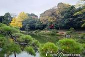 紅葉飄飄15日東京自由行--清澄庭園一眼看不完的池畔風情:09.JPG