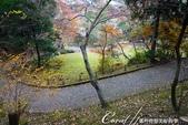 ●成田山公園充滿逸趣的小徑:DSC08402.JPG