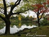 紅葉飄飄15日東京自由行--清澄庭園一眼看不完的池畔風情:16.JPG