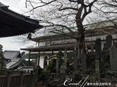 紅葉飄飄15日東京自由行--成田山新勝寺:29-1●池畔的石碑與雕像.JPG