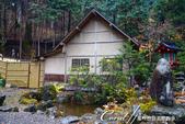 紅葉飄飄15日東京自由行--日光二荒山神社:●二荒靈泉旁的休憩所02.JPG