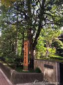 紅葉飄飄15日東京自由行--殿ヶ谷戸庭園:02●都立文化遺產九庭園之一的殿ヶ谷戸庭園,原名為隨宜園.JPG