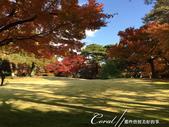 紅葉飄飄15日東京自由行--殿ヶ谷戸庭園:19●園區內較高處屬西式風格的寬闊草坪,與低處以次郎弁天池為中心的日式庭園,構成日西合璧獨特風貌.JPG