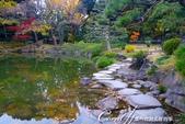 紅葉飄飄15日東京自由行--清澄庭園內的奇石及渡池石塊:10.JPG
