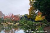 紅葉飄飄15日東京自由行--清澄庭園一眼看不完的池畔風情:06.JPG