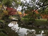 紅葉飄飄15日東京自由行--清澄庭園:25●欣賞池中的魚、水上的鴨和倒映在水中的樹,是來此庭園的一大樂事03.JPG
