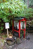 紅葉飄飄15日東京自由行--日光二荒山神社:●日光錢洗所.JPG