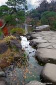 紅葉飄飄15日東京自由行--成田山公園:10(16)●或許因為岸邊有大大小小的石塊裝飾,或是建造之初賦有關於智慧的意象。總之,三座池中,我特別喜愛文殊池.JPG