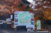 紅葉飄飄15日東京自由行--寶登山尋寶趣:11●出現遊寶登山的路線圖.JPG