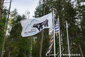 2018加拿大四年一度鮭魚洄遊V.S.洛磯山脈國家公園健走趣(5-2)--鮭魚迴游生態奇觀:02●跟著人群步向河岸.JPG